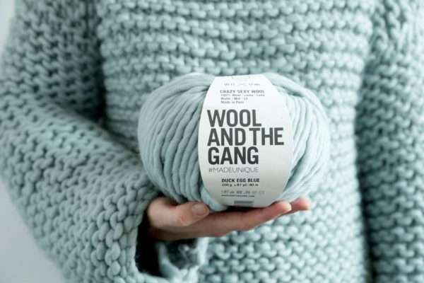 Wool and the Gang Crazy Sexy Wool yarn